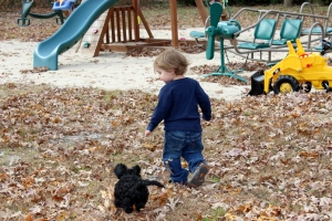 toddler and cockapoo puppy